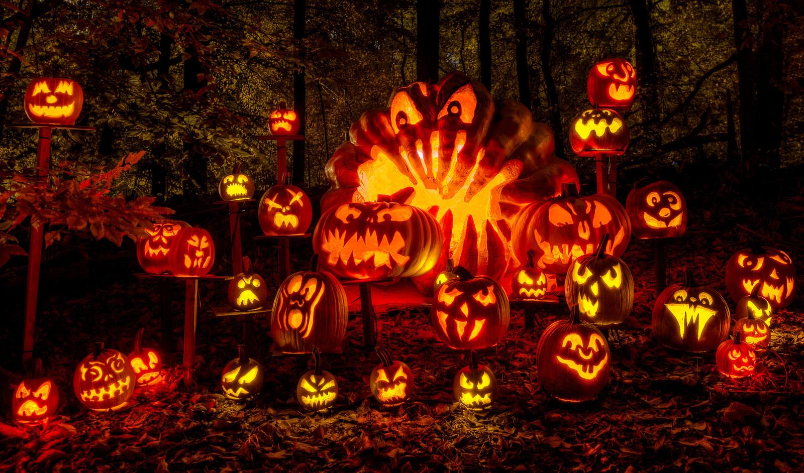 Jack O Lantern Maintenance Upkeep For Long Lasting Pumpkin Art
