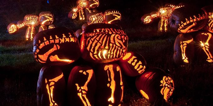 Jack-O-Lantern Maintenance & Upkeep for Long-Lasting Pumpkin Art!